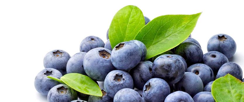 Propiedades antioxidantes de los arándanos