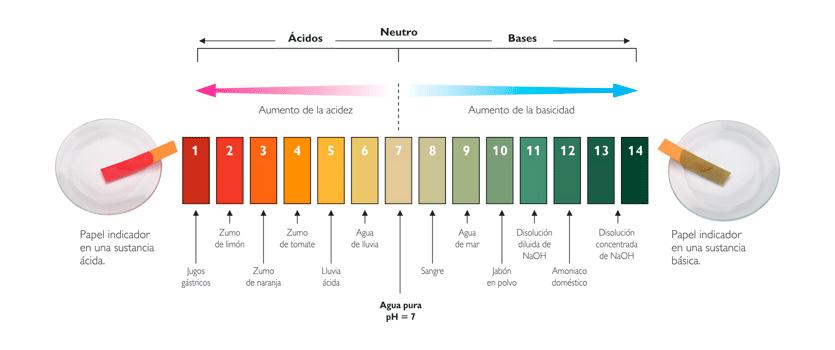 Escala del pH en los alimentos