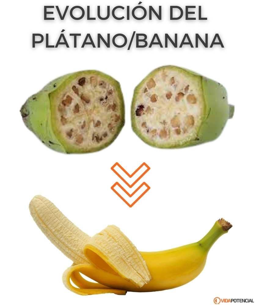 frutas con poco azucar
